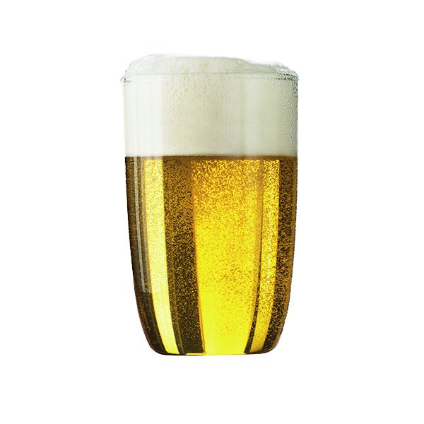 beer glass Bodum